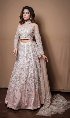 Blush Crop Top And Skirt With All Over Silver Embroidery